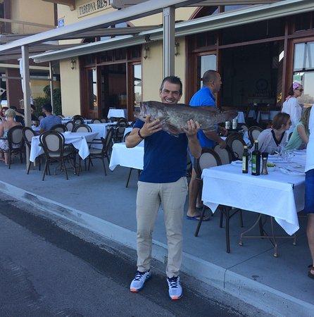 σφυριδα στο saga fish restaurant