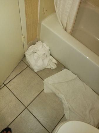 The Hotel Fresno: bagno non pulito e asciugamani mai cambiati