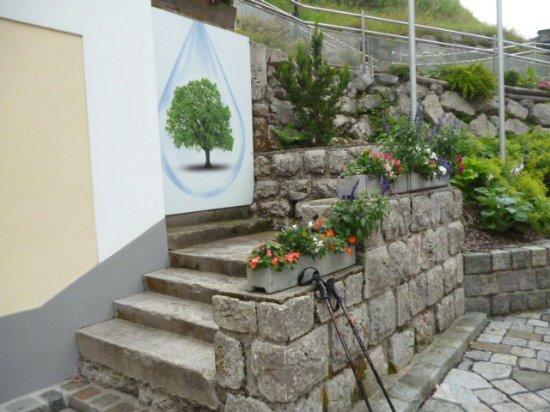 Wildalpen, Áustria: Vízcsepp, természet, turistabot