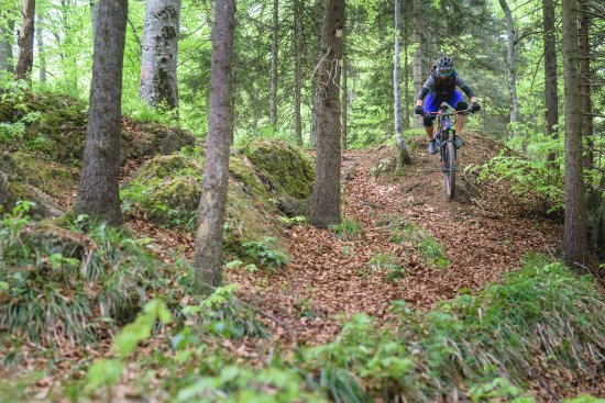 Mountain Biking Tours Powered By Nature