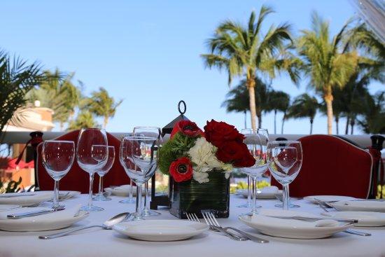 Il Mulino - Miami : Waterfront Dinning