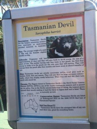 Grantville, Australien: photo4.jpg