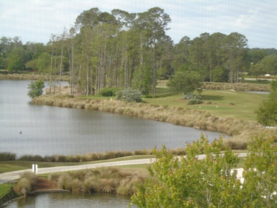 Grande Villas at World Golf Village: This was a view from our room balcony. It is through a screen.