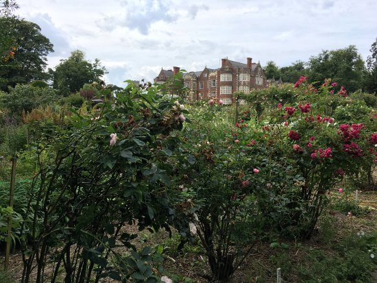 Burton Agnes, UK: photo2.jpg