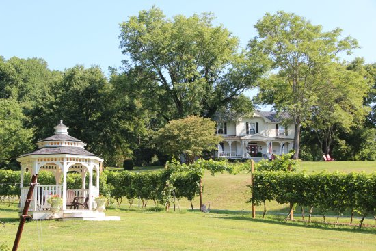 Lovingston, VA: Our vineyard gazebo is a beautiful spot for a wedding ceremony!