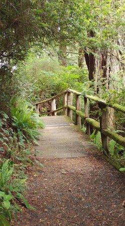 Klamath, CA: again love the paths