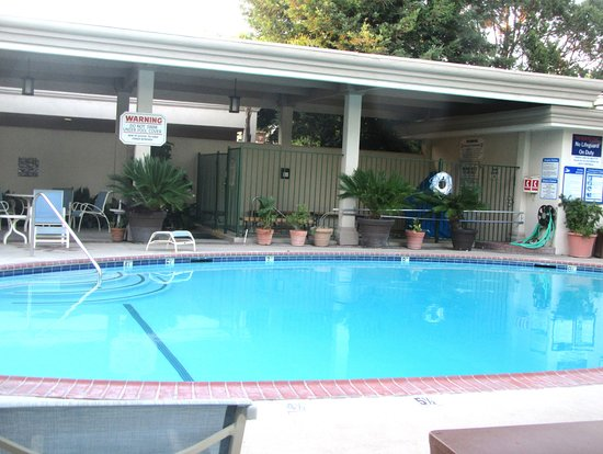 Swimming Pool, Best Western Plus Black Oak, Paso Robles, CA
