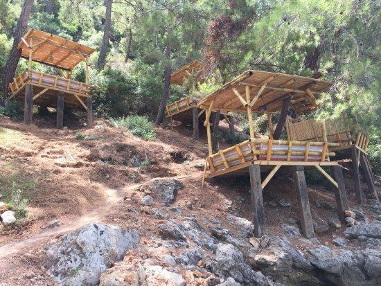 Help Beach Bar: photo2.jpg
