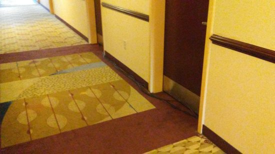 Comfort Inn & Suites: room across hall from first one assigned