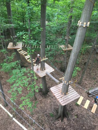 Lake Erie Canopy Tours: Climber on lower course waving