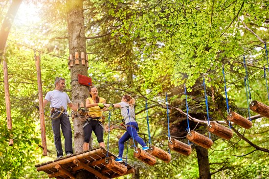 Team building opportunities at Lake Erie Canopy Tours