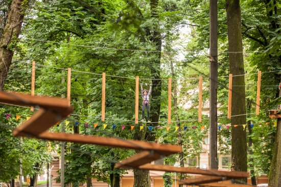 Lake Erie Canopy Tours: Over 35 elements from easy to extreme!