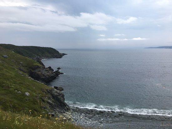 Lighthouse Picnics: great spot for a picnic!