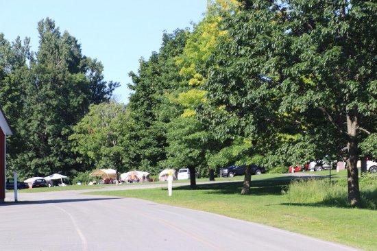 Wellesley Island Fineview Ny