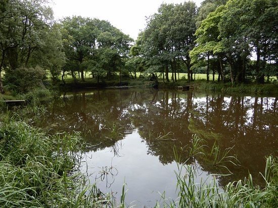 Padiham, UK: Woodland Walk and Pond.