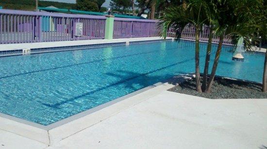 เอวอนพาร์ค, ฟลอริด้า: Pristine Pool