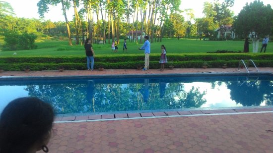 Kaziranga Golf Resort: swimming pool