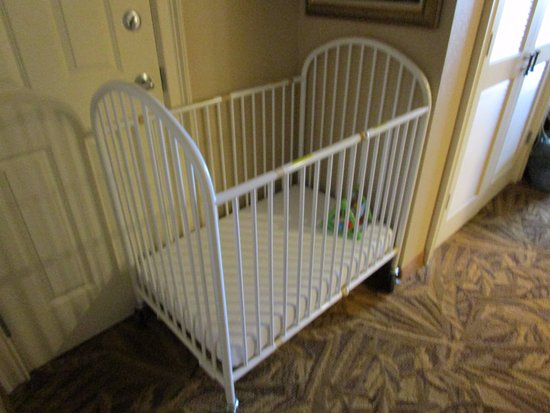 products biggy cribs pack iggy play crib baby rentals cape cod page n porta