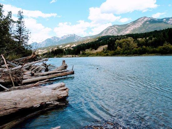 Columbia River Paddle: Nature.
