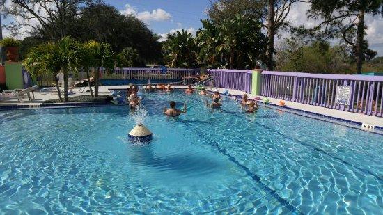 เอวอนพาร์ค, ฟลอริด้า: Water Aerobics Class
