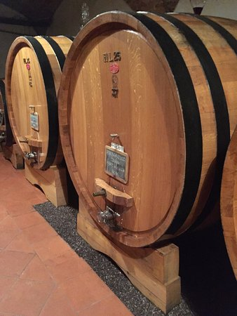 Barbaresco, Italy: photo1.jpg