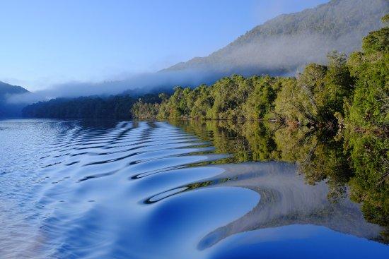 Tasmanien, Australien: Morning mist