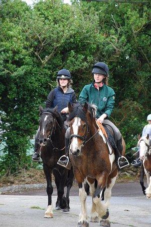 Camp, İrlanda: Back home safe & sound