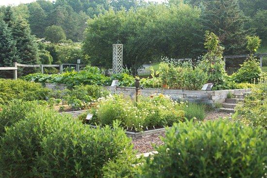 Pounder Vegetable Garden - Picture of Cornell Botanic Gardens ...
