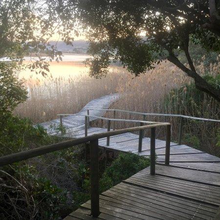 Wilderness, Sør-Afrika: photo1.jpg