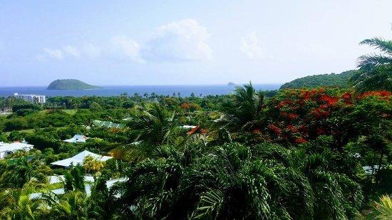 Caraibes Bonheur : Our view
