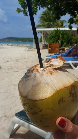Buccaneer Beach Club: sipping from a coconut that just fell on the beach!