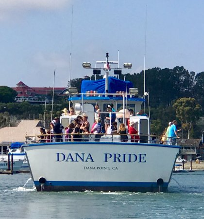 Cool to see the 95-foot DANA PRIDE returning to DANA POINT HARBOR!