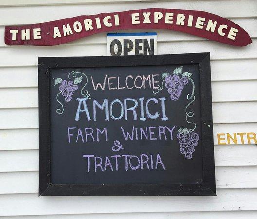 Amorici Vineyard