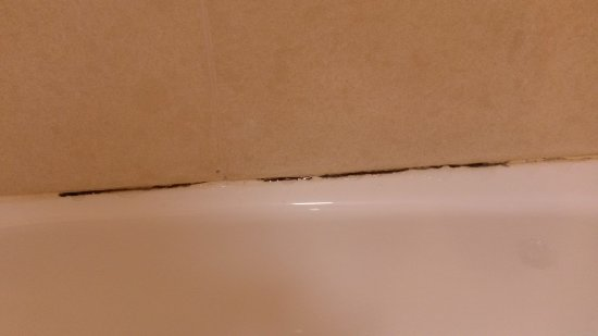 Comfort Inn-Kansas City Airport: appears to be mold growing in the bathroom