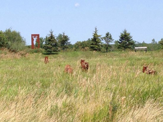 Bloomfield, Canada: The art in the garden