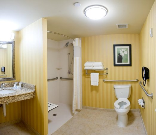 Hilton Garden Inn Pensacola Airport Medical Center Accessible Bathroom