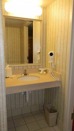 Hilton Garden Inn Pittsburgh/Southpointe: Accessible Sink Facilities