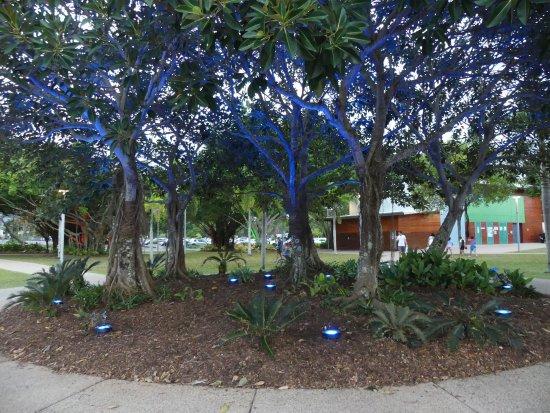 picture of esplanade boardwalk cairns. Black Bedroom Furniture Sets. Home Design Ideas