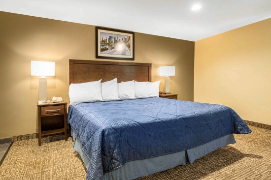 Lyons, IL: Guest Room