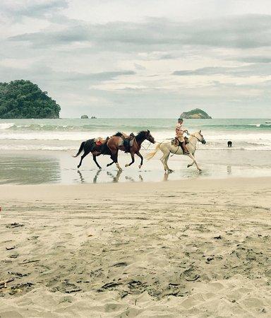 Нуэво-Ареналь, Коста-Рика: photo4.jpg