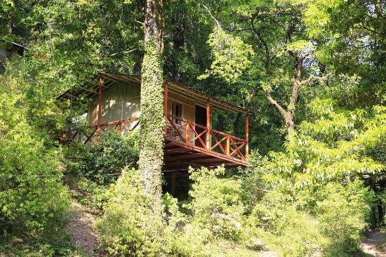 Ayar Jungle Camp : Machan /treehouse exterior