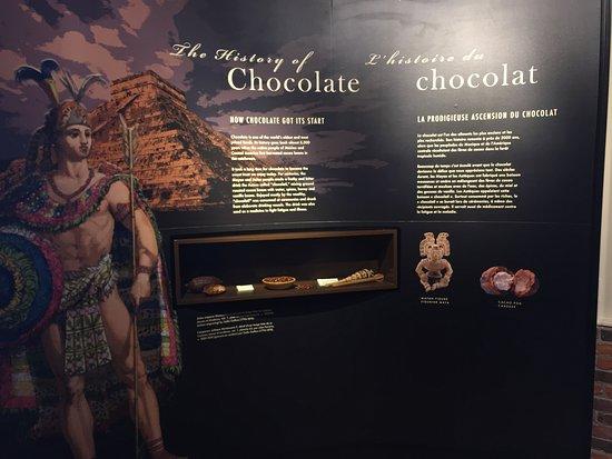 The Chocolate Museum : photo9.jpg