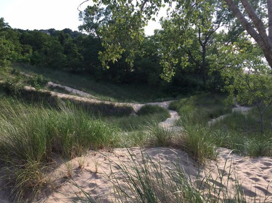 Chesterton, IN: Dunes