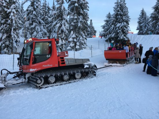 North Vancouver, Canada: sleigh riding