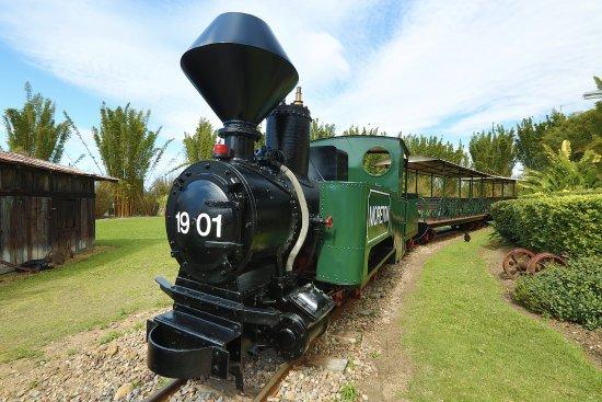 Yandina, Australien: Moreton Train Ride