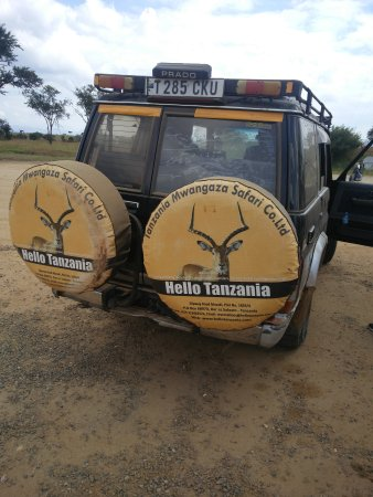 Hello Tanzania Tours & Safari