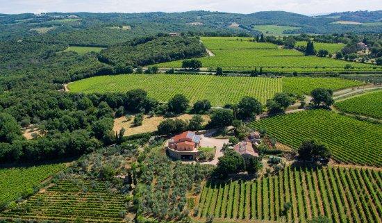 Montalcino, Italië: Collemattoni