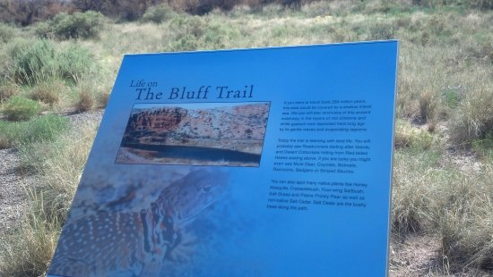 Bottomless Lakes State Park: The Bluff Trail