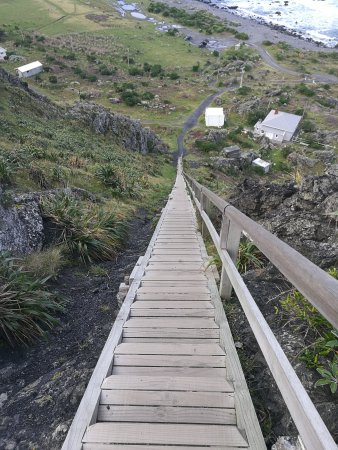 Wairarapa, Selandia Baru: Great day trip from Wellington!