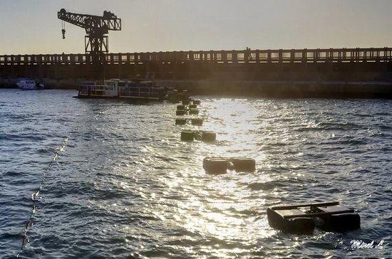 """Old Tel Aviv Port Area: המזח והמנוף הישנים של נמל ת""""א"""